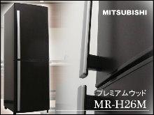 1-MITSUBISHI256L